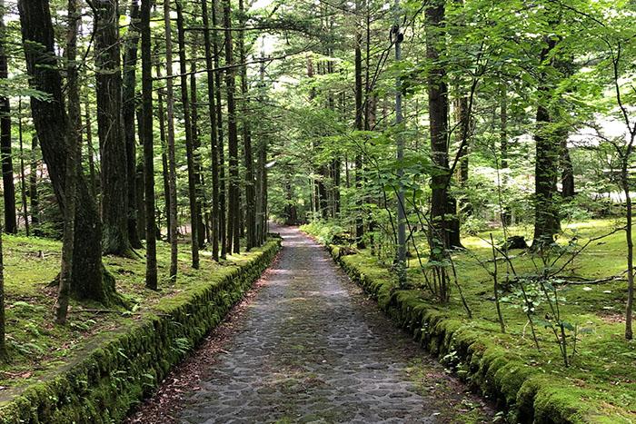 軽井沢で別荘リフォーム!おすすめプラン&気をつけたいこと